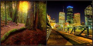 elige naturaleza o ciudad